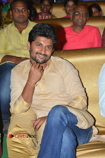 Nenu Local Audio Launch Stills  0094.JPG