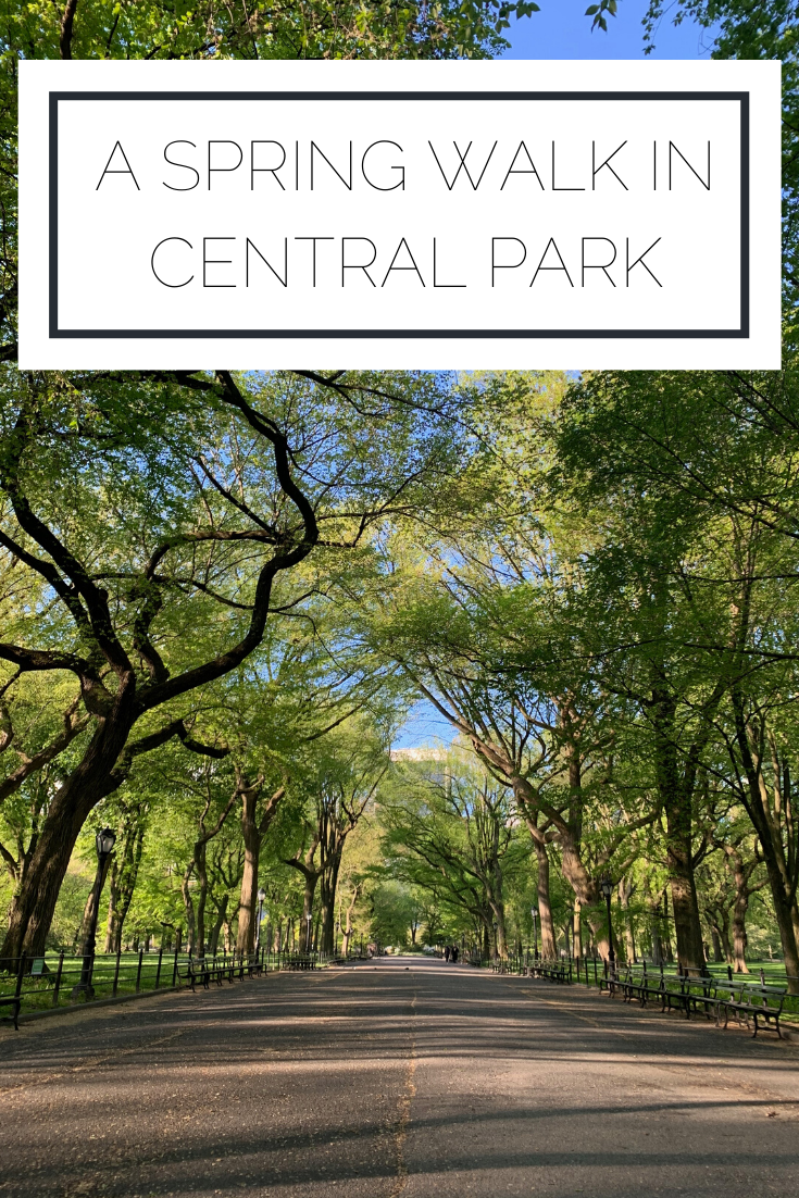 Click to read now or pin to save for later! Check out this beautiful Central Park photography