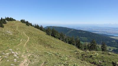 Schöner Trail über den Grat...