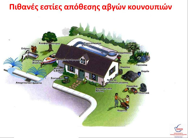 Με γνώμονα τις αποφάσεις του Δ.Σ. και την συνεργασία των πολιτών ο Δήμος Ναυπλιέων στην «μάχη» κατά των κουνουπιών