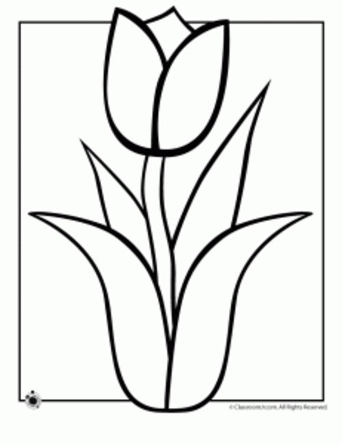- Free Coloring Pages : Spring Flowers Coloring Pages