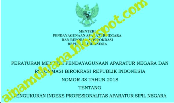 Peraturan Menpan atau Permenpan RB Nomor  PERMENPAN RB NOMOR 38 TAHUN 2018 TENTANG PENGUKURAN INDEKS PROFESIONALITAS APARATUR SIPIL NEGARA
