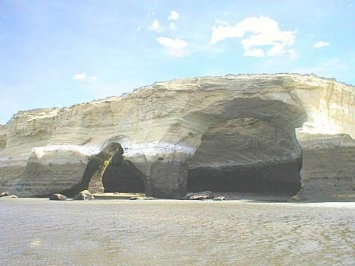El Parque Nacional Monte León es un área protegida representativa de la biodiversidad costera patagónica.