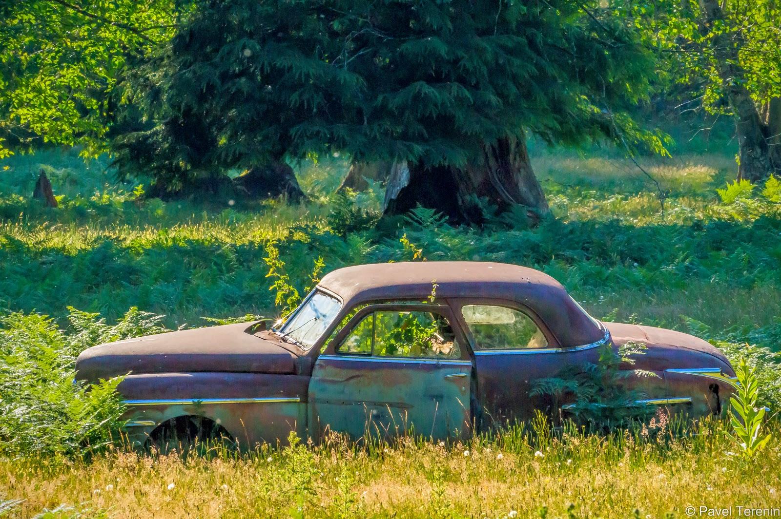 В районе от Ньюхолема до городка Лиман таких заброшеных машин вдоль дороги на удивление много.