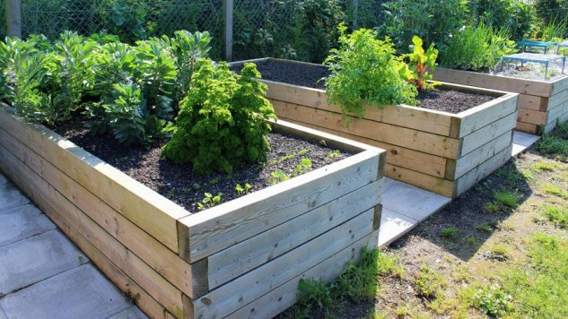 25 Creative Cheap Raised Garden Bed Home Decor