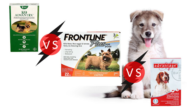 how good is frontline plus for dogs frontline plus for dogs frontline vs advantage flea flea tick advantage dogs