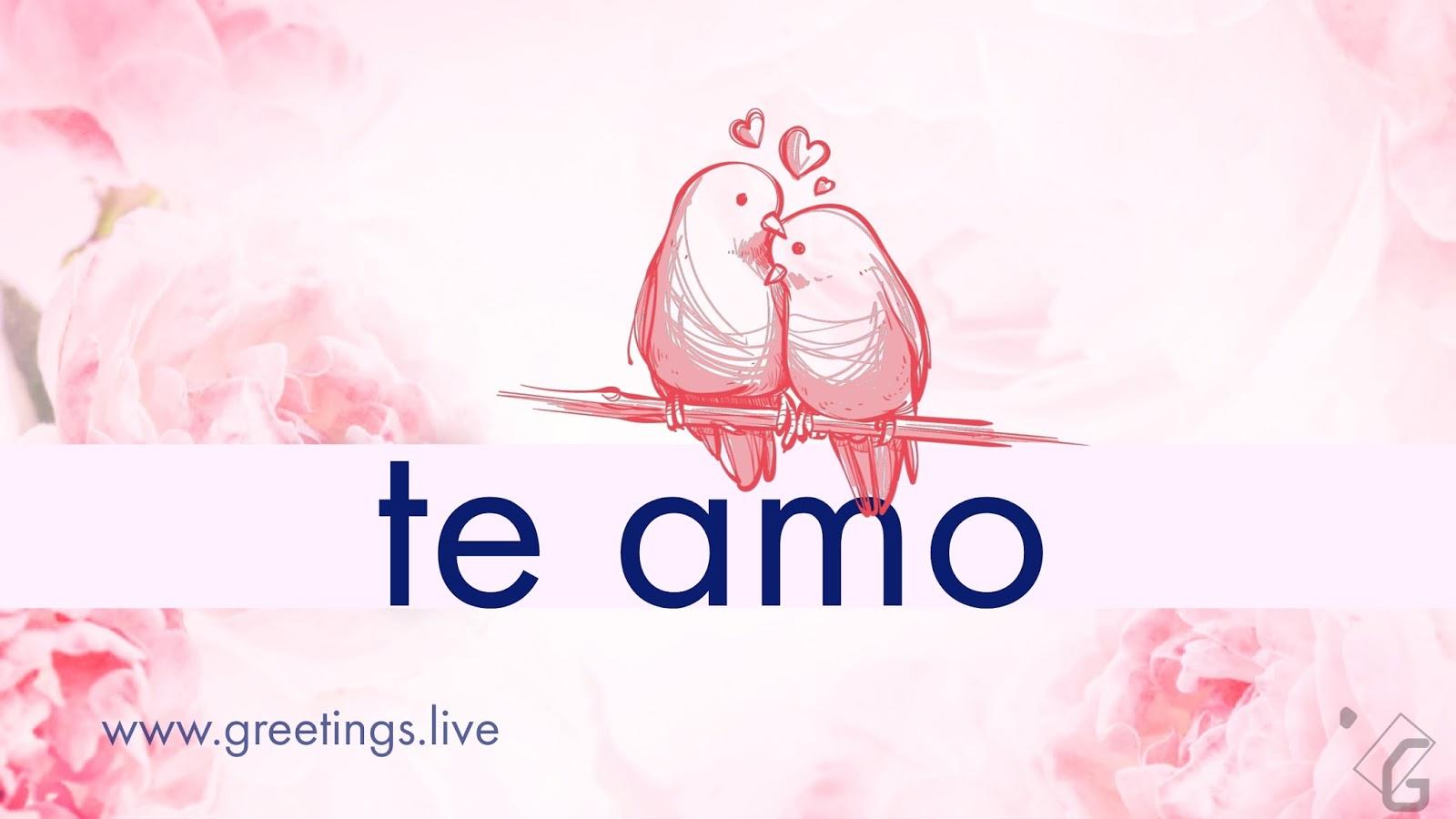 i love you in spanish - 1200×630