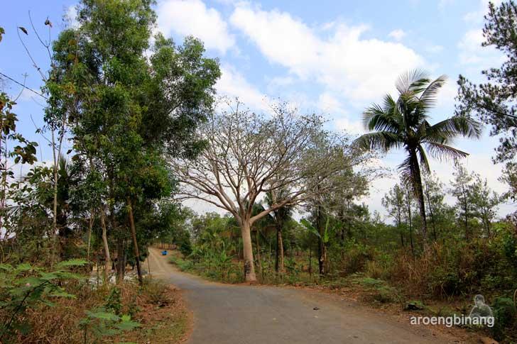 [CoC Regional: Lokasi Wisata] Bumi Perkemahan Kendalisada Kalibagor Banyumas