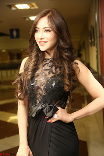 Angela Krislinzki in Transparent Black Gown at Rogue Movie Teaser Launch 1st March 2017 107.JPG