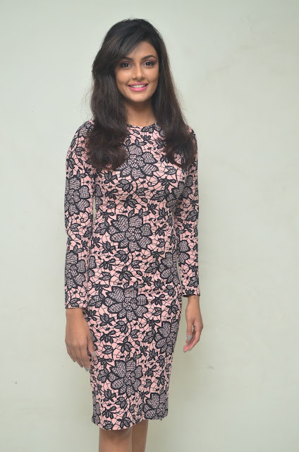 Anisha ambrose Stills at Fashion Designer S/o Ladies Tailor Press meet