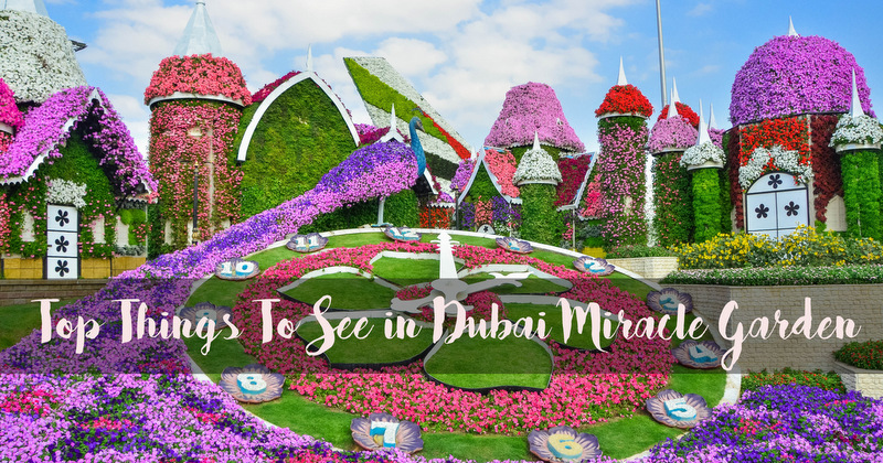 Top Things To See in Dubai Miracle Garden This Season | Lady & her Sweet  Escapes
