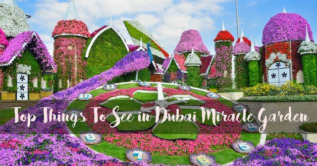 Dubai Miracle Garden 2019