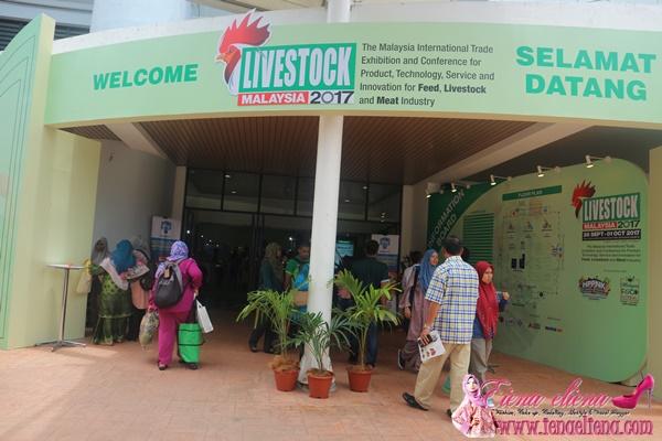Live Stock Malaysia