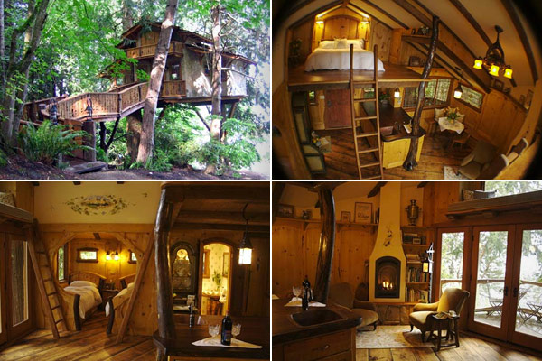 Opalblog Treehouse Homes