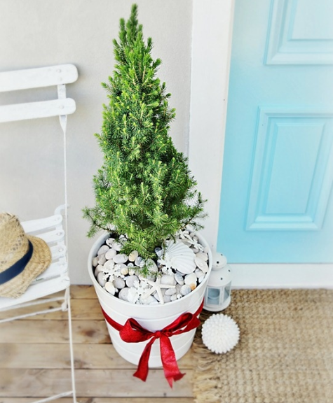 mini outdoor Christmas tree in bucket