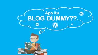 Pengertian Dan Manfaat Blog Dummy Dalam SEO
