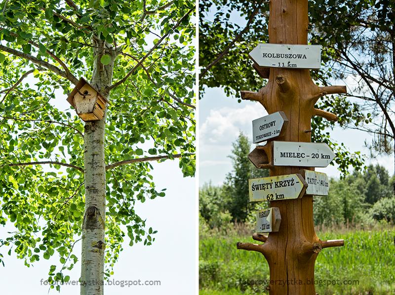 ścieżka przyrodniczo dydaktyczna w Ostrowach Tuszowskich
