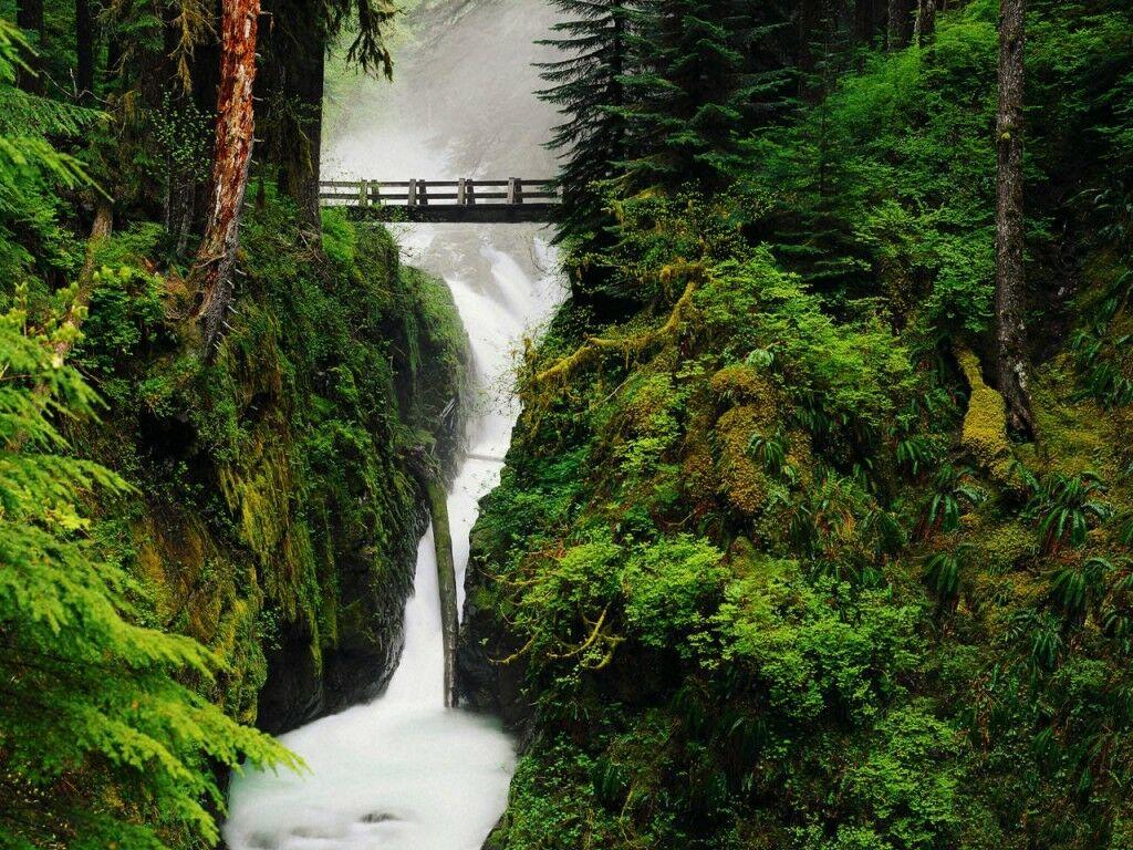 Fall Hd Yuvraj Singh Wallpaper Water Falls Hd Wallpapers High Definition Free