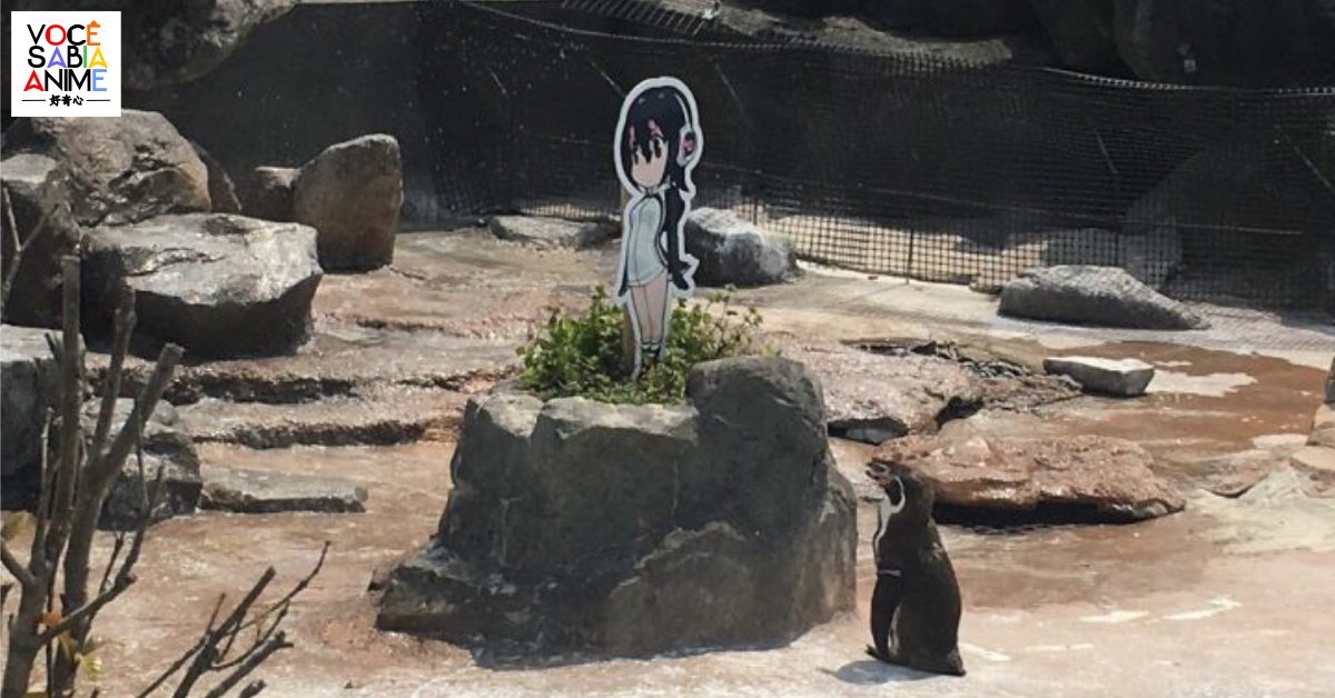 Morreu o pinguim Grape-kun, que se apaixonou por personagem de Kemono Friends