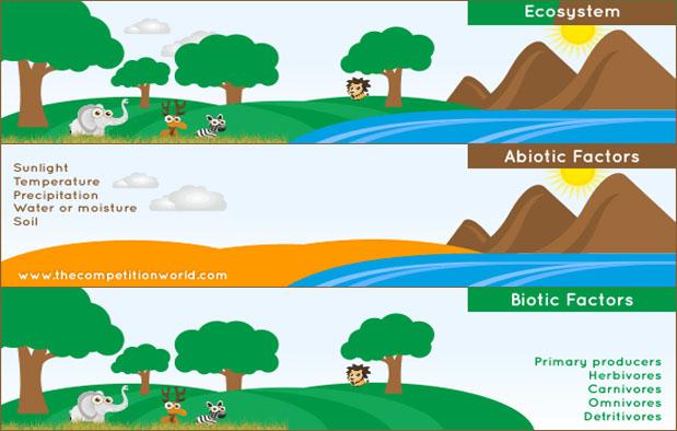 2 Komponen Penyusun Ekosistem Biotik Dan Abiotik