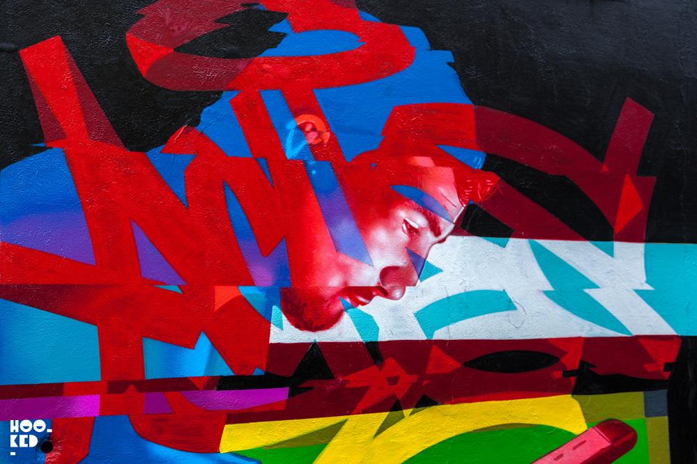Waterford street art festival mural by artist Aches