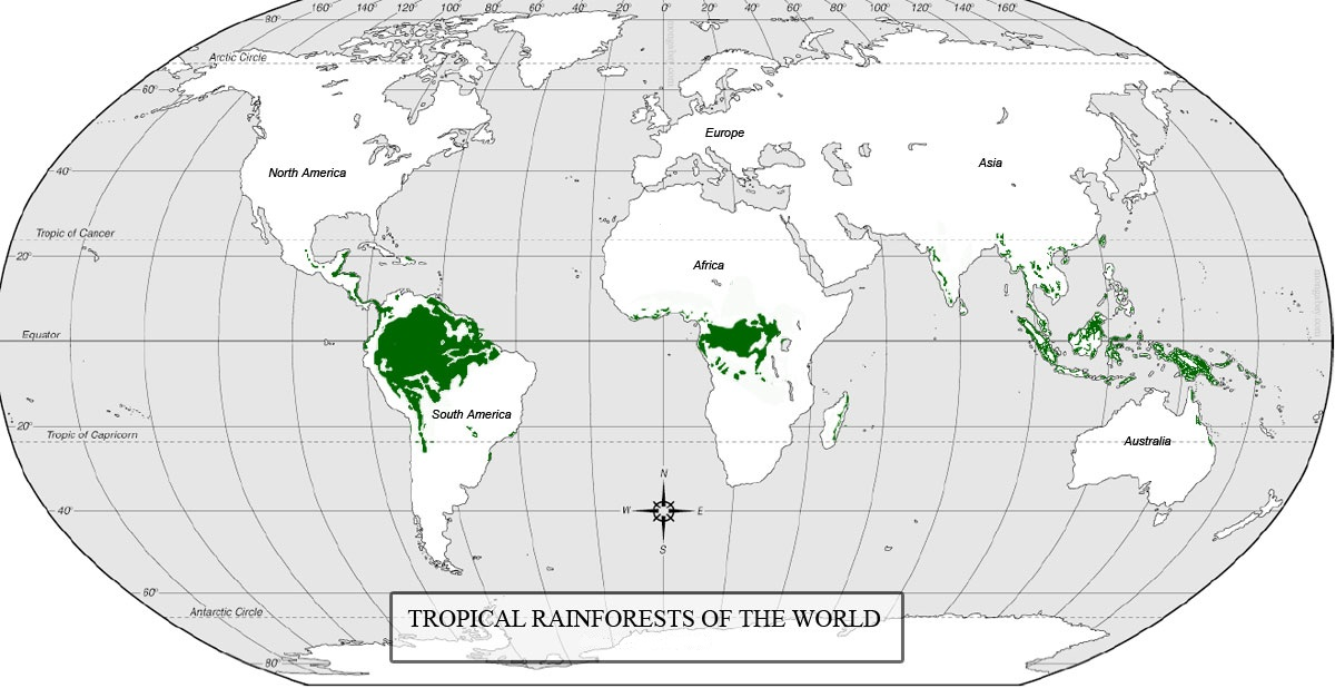 Map showing tropical rainforest gumiabroncs Choice Image