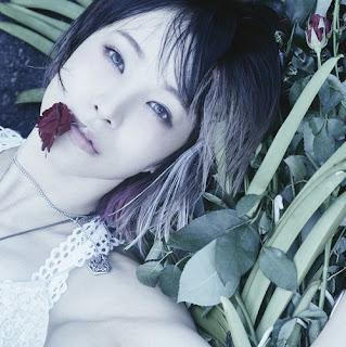 """LiSA - ASH """"Fate/Apocrypha"""" Opening#2 ( Lyrics + Terjemahan )"""