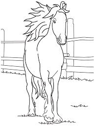 Beauty Horse At Farm For Coloring Images