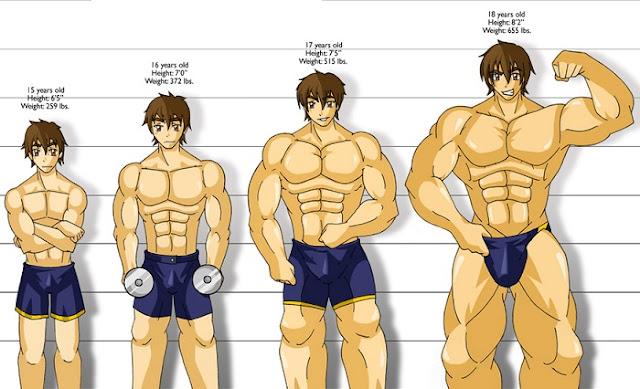 4 Secret Muscle Building Principles
