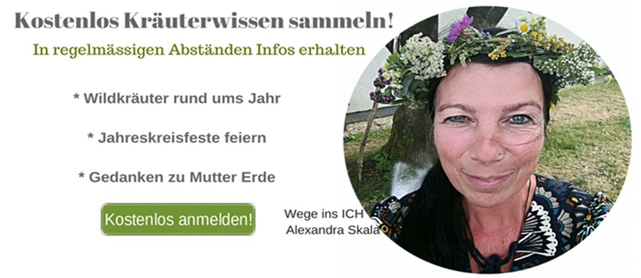 http://www.dw-formmailer.de/forms.php?f=102242