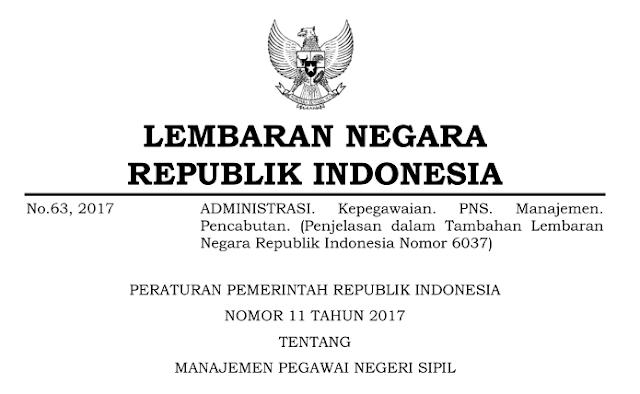 PP Nomor 11 Tahun 2017