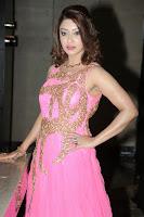 Payal Gosh Latest Glam pics in Pink HeyAndhra
