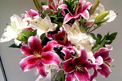 Manfaat Bunga untuk Kesehatan Mental
