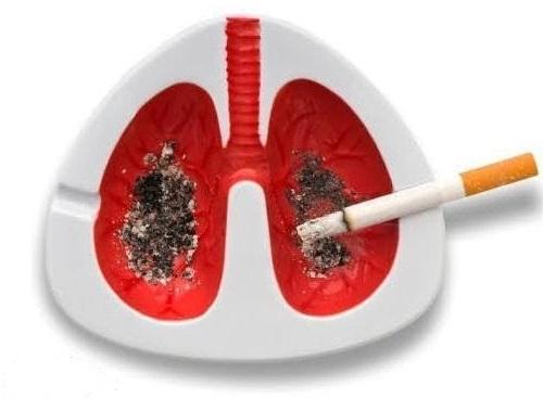 öksüren akciğer küllük