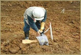 Grade control melakukan sampling top ore