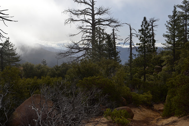 gully trail and misty mountains