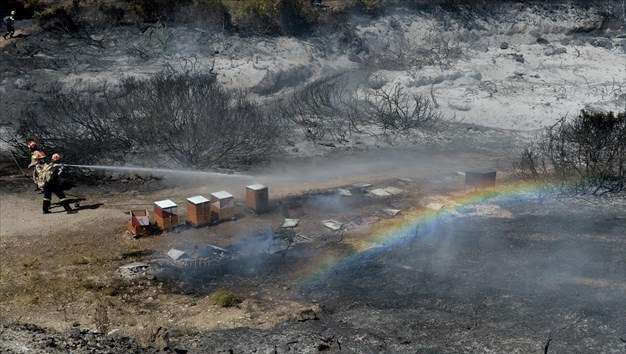 Κάηκαν μελίσσια, ένα σπίτι, δύο Ι.Χ. και ένα πυροσβεστικό όχημα από τη φωτιά στο Λαγονήσι