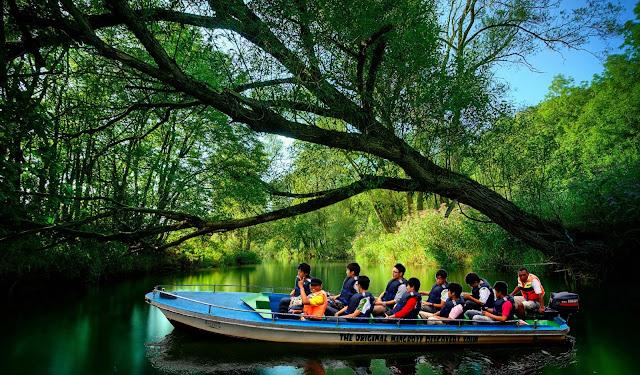 Hutan Mangrove Bintan