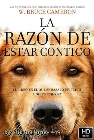 La Razon De Estar Contigo [1080p] [Latino-Ingles] [MEGA]