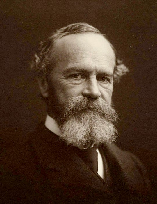 وليام جيمس William James