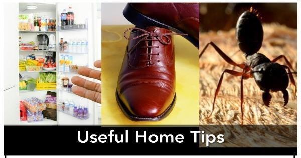 Get Home Tips in Hindi / होम टिप्स इन हिंदी / Very Useful Home Tips in Hindi