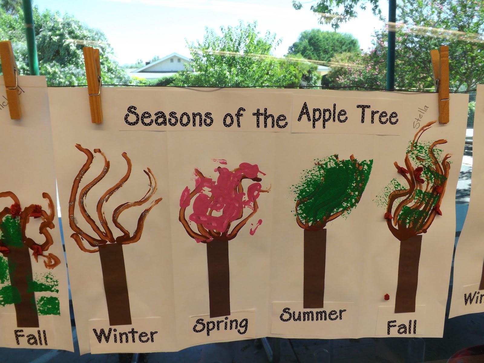 Mrs Vento S Kindergarten Apple Week