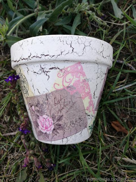 doniczka inspirowana kolorem różowym