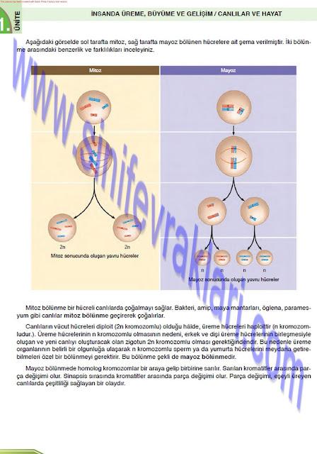 8. Sınıf Fen Bilimleri Ders Kitabı Cevapları Öğün Yayınları Sayfa 28