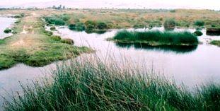 Foto del Santuario de lagunas - Arequipa de día