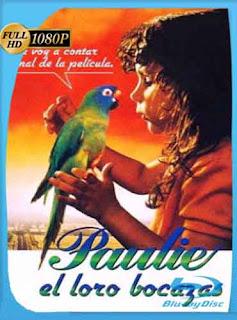 Paulie el loro bocazas Paulie (1997) HD [1080p] Latino [Mega] dizonHD
