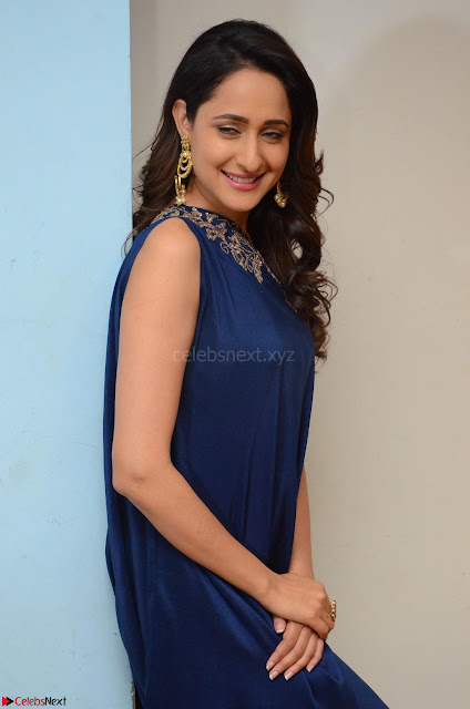Pragya Jaiswal in beautiful Blue Gown Spicy Latest Pics February 2017 009.JPG