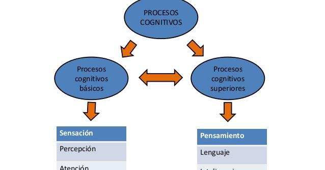 PROCESOS COGNITIVOS BASICOS PDF