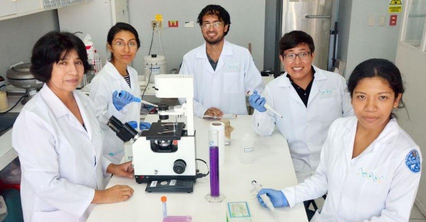 UNMSM: Conoce los innovadores proyectos creados por estudiantes de la Universidad San Marcos