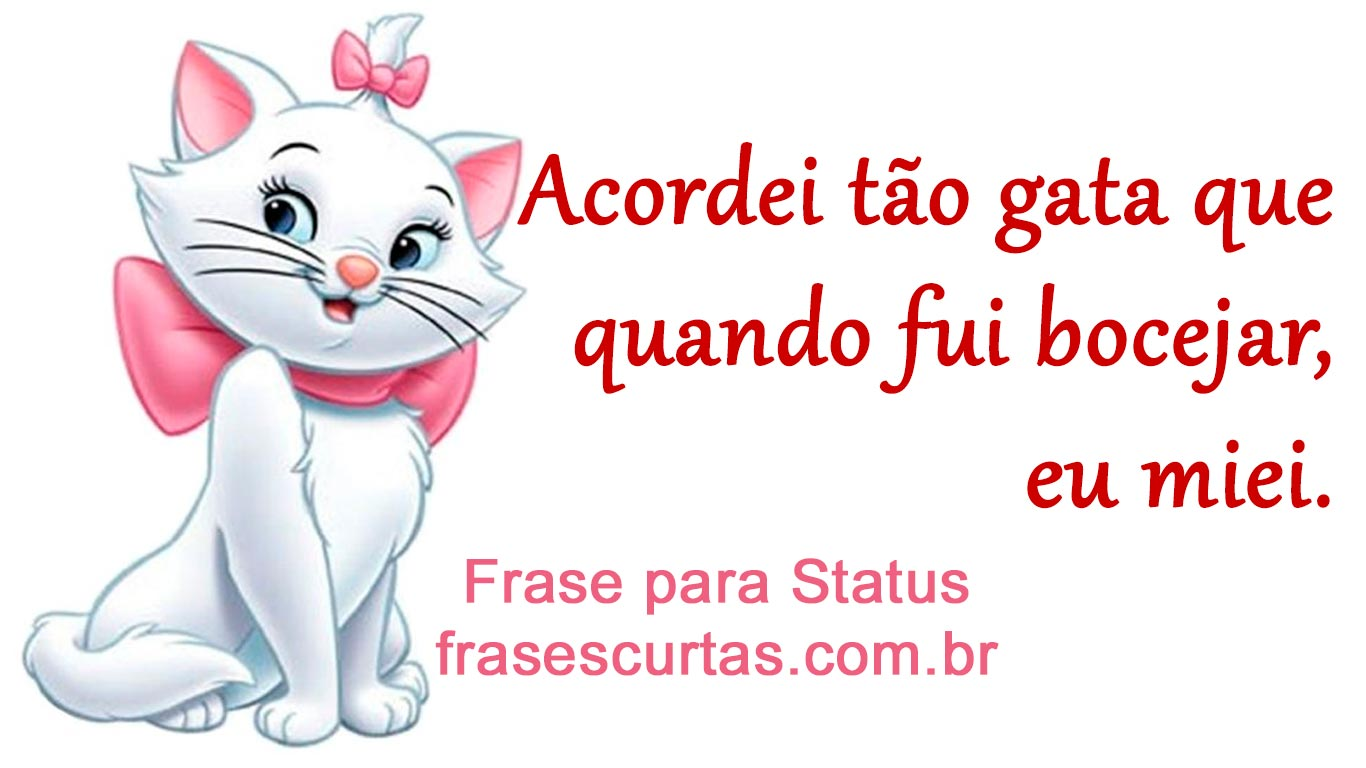 Frases Para Status Do Whatsapp Frases Curtas